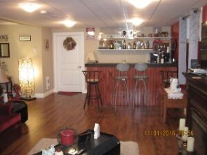 Beautiful 2 year old family home in Butlerville St. John's Newfoundland image 11