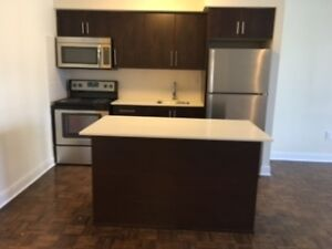 Spacious Newly Renovated 2 bedroom Midtown
