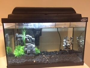 5.5 Gallon Hagen Glass Fish Tank and Accessories
