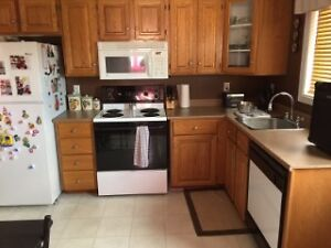 Just Listed 2 Apartment In Mount Pearl. St. John's Newfoundland image 2