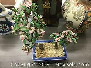 Large Green Jade Blossom Tree
