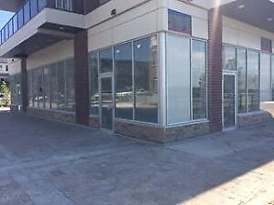 For Lease: Commercial Units on Mississauga Rd, Many Uses Allowed