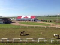 BOARDING HORSES ROOM FOR 2 FOR THE WINTER