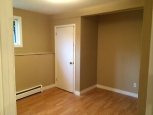 spacious 2 bedroom basement apartment