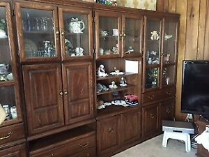 Wall Unit / China Cabinet / Multi Media Center