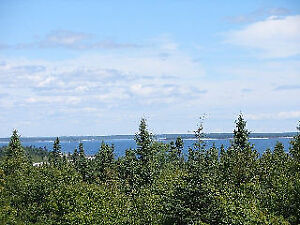 54 + Acres for sale! Near Liverpool 902-488-0449