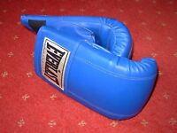 Brand new pair of EVERLAST Boxing gloves