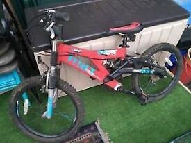 Child Sports Bike