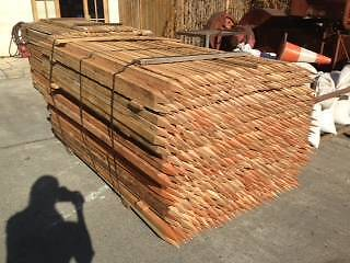 Hardwood Stakes, and survey pegs Northgate Brisbane North East Preview
