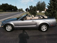 2007 Ford Mustang Convertible 4.0 litre