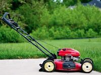 Lawn mowing (20$)