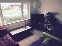 3 Bedroom Detached House - 2 Bedrooms Available for 1 Professional Couple - Must Love Dogs