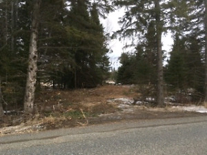 BUILDING LOT ON TOWNLINE ROAD 24 ACRES