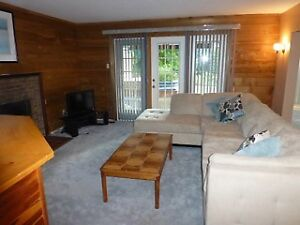 Large Walkout Basement Suite For Rent- Available Now