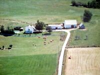 Nova Scotia Farm For Sale