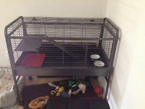 Cage sur roue Furet Lapin DISPONIBLE