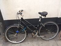 WOMEN's BICYCLE FOR SALE - BRAND: GIANT