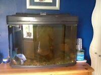 AQUARIUM/FISH TANK FOR TROPICAL OR COLD WATER
