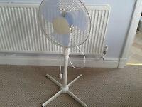White free standing fan