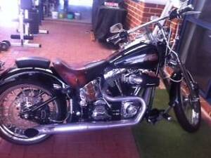 2003 Harley Davidson Ashby Wanneroo Area Preview