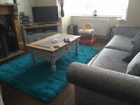 Brand new shaggy rug - teal colour. Genuine reason for sale - £30.00