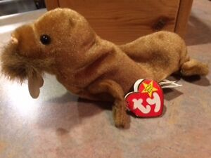 Ty Beanie Baby - Paul the Walrus -