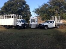 Horse Transport Plainland Lockyer Valley Preview