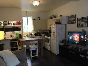 Apartment for rent, downtown area