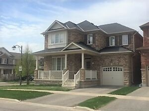 Upgraded Detached 4 Bedroom Family Home On Premium Corner Lot