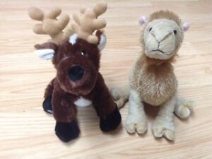 Cool Camel and Radiant Reindeer webkinz!