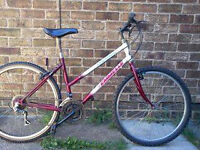 ladies/girls 15 spead mountain bike, ideal for work or schiool. ( £10 no offers )