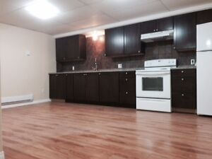 2 bedroom basement suite for rent to working professional(s)