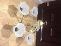Brass coloured light fitting with 5 glass shades