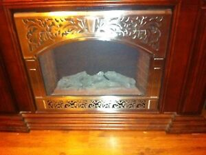 Electric fire place  NEW PRICE $250