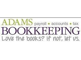Brilliant Bookkeeper &/or payroll Clerk for Ongoing & Ad Hoc Work, & Practice Accountant
