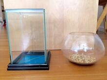 2 Fish bowls for betta fish or goldfish $15 for both Moore Park Inner Sydney Preview