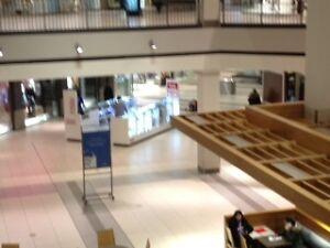 Run your Business in Busiest Mall