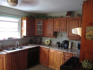 Beautiful Home - Close to Trent Express and Downtown - Util Incl