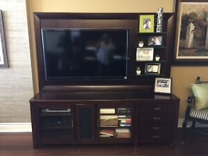 TV and Hooker Entertainment Unit