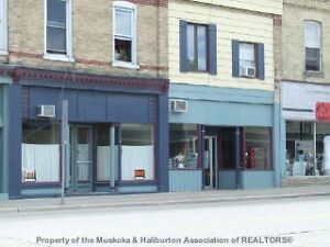 12 plex 9 apartments 3 commercial units in Lucknow London Ontario image 3