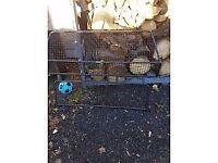 Landrover Discovery 4 dog/cargo guard