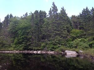 LAKE LOT WITH LOTS OF POTENTIAL!