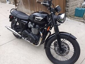 MINT 2015 Triumph T100 All Black Bonneville