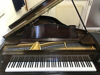 STECK BABY GRAND PIANO - OPEN OFFERS