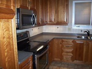 FERGUS - Beautiful & Spacious House for Rent
