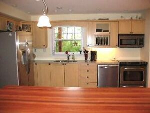 Kitchen Cabinets & Island