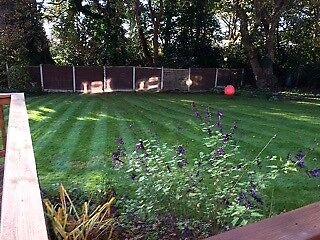 All Garden Maintenance