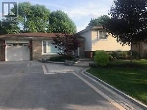 466 RUPERT AVE Whitchurch-Stouffville, Ontario