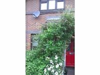 London 2 bed house for St Ives Cornwall
