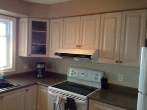 Kitchen Cabinets - Nearly new